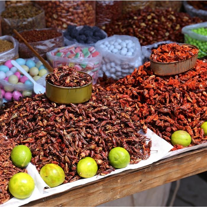 Ricos-proteinas-alimento-mexicano