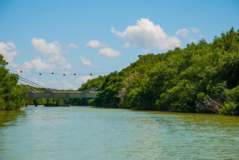 Río Lagartos